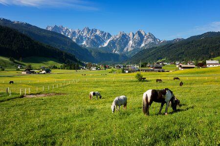 Colorful outdoor scene in the Austrian Alps. Summer sunny day in the Gosau village on the Grosse Bischofsmutze mountain range, Austria, Europe.