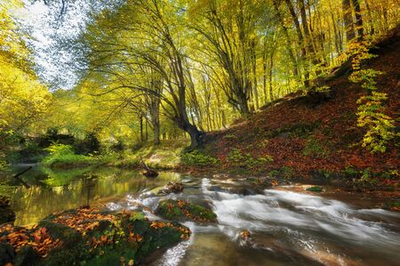 Dokuzak waterfall in Strandja mountain, Bulgaria during autumn. Beautiful view of a river with an waterfall in the forest. Magnificent autumn landscape.