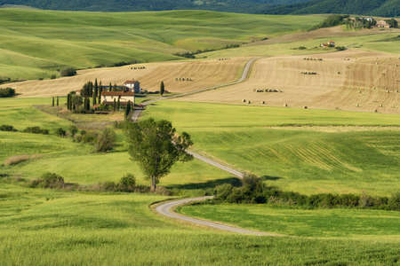 Magnificent spring landscape.Beautiful view of typical tuscan farm house, green wave hills, cypresses trees, hay bales, olive trees, beautiful golden fields and meadows.Tuscany, Italy, Europe