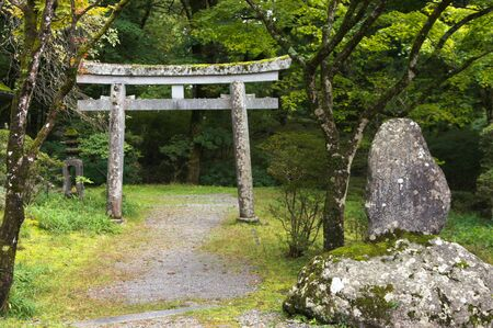 Marble torii in the wood photo