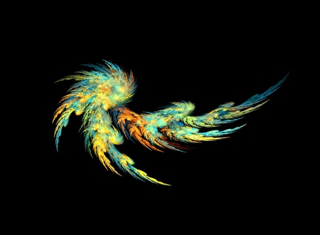 digitally generated image: Color abstract feather