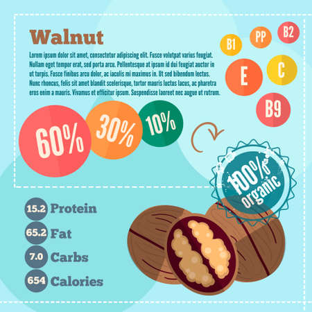 nogal: Walnut apple and vitamins in a flat style. Vector illustration EPS 10