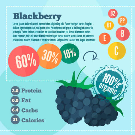 blackberry: blackberry and vitamins infographics in a flat style. Vector illustration EPS 10