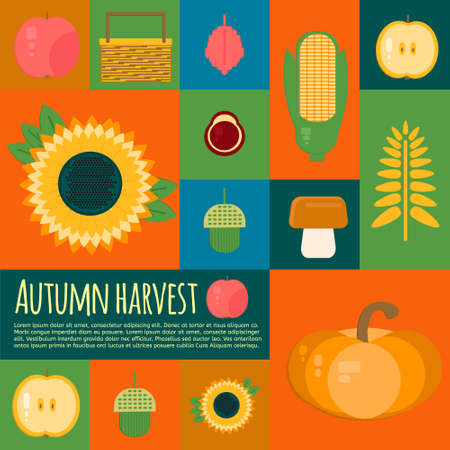 wooden crate: Wooden crate with autumn fruits and vegetables. Vector illustration of autumn harvest in flat style. Background with fresh, natural foods. Cart with product buy in supermarket. Diet and organic food template.