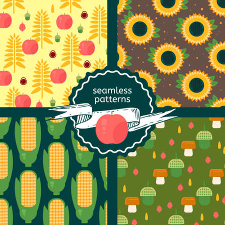 oil crops: Set of autumn harvest patterns. Vector backgrounds with sunflower, acorns, corn ears, wheat and apples. Seamless backdrops in flat style. Illustration