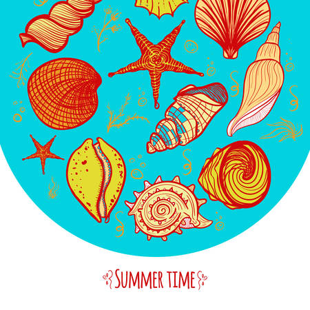 Set of colorful seashells in a circle. Creative hand drawn doodle seashells, starfish, seaweed and coral.