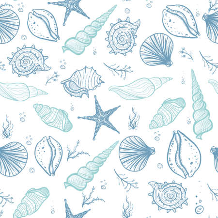 Zeeschelpen naadloos patroon. Hand getrokken doodle schelpen, zeesterren, zeewier en koralen. Creatieve zeeschelpen vector achtergrond.