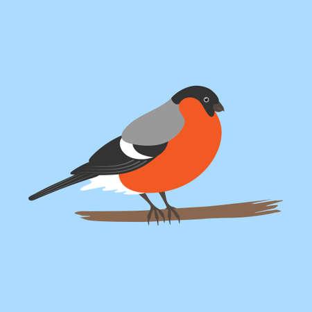 Bullfinch icon Vektorové ilustrace