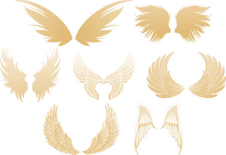 Set of various golden shimmering angel wings isolated on white background