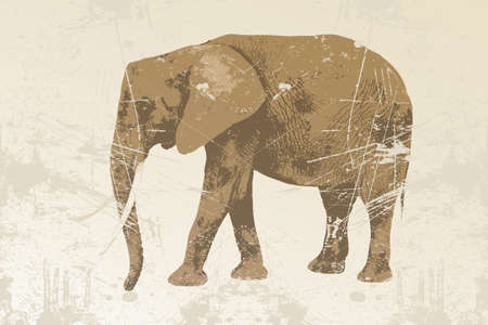 room for text: Vintage poster with elephant on grungy background - with room for text