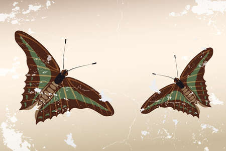 green butterfly: Hand drawn butterflies on vintage background Illustration