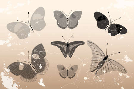 Hand drawn butterflies in vintage design on retro background Stock Vector - 11984227