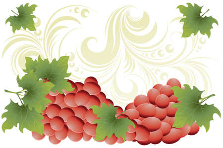leaf close up: Red wine - red grapes on golden floral background with copy-space Illustration