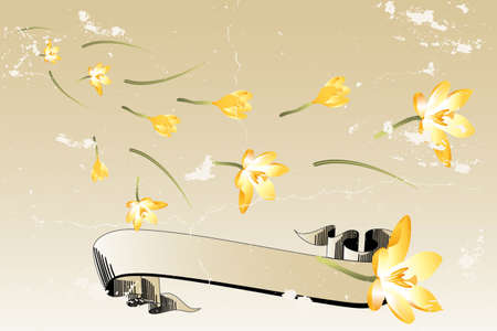 Vintage spring illustration with crocus and banner for text Stock Vector - 12308022