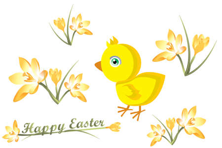 Easter card with little chick and crocuses Stock Vector - 12486781