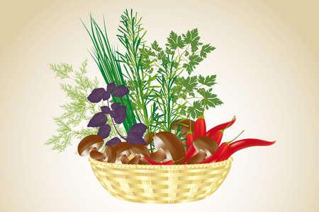 koriander: Kézzel rajzolt ábra különféle friss alapanyagokból egészséges étel