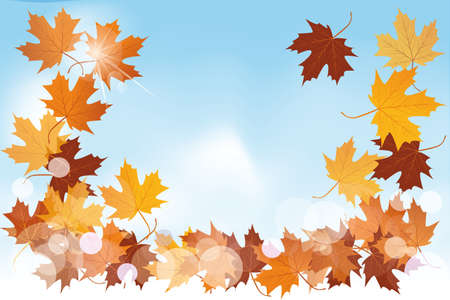 Colorful autumn leaves Stock Vector - 15758160