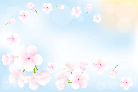 Flying cherry-blossoms in spring - seasonal background with place for text Stock Illustratie