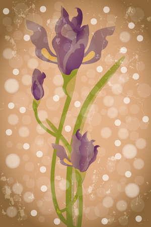 Violet Iris flower - romantic illustration in watercolor details and translucent bubbles on warm brown background Illusztráció