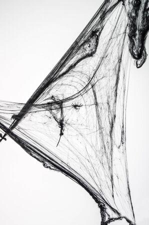 spiderweb: Black spiderweb on white background