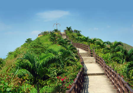 Stairway to heaven. Tropical garden with stairs leading to the sky.