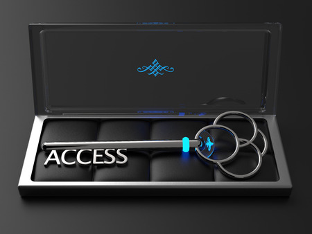 A silver key with the word Access