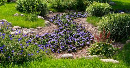 ornamental garden Фото со стока
