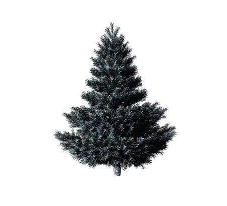 cold cuts: christmas tree isolated on white background Stock Photo