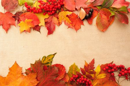 background from autumn leaves and textile photo