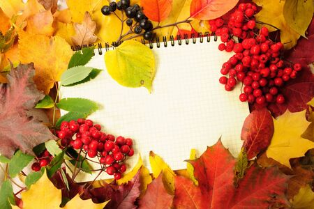 background from autumn leaves and writing-book Stock Photo - 3663367