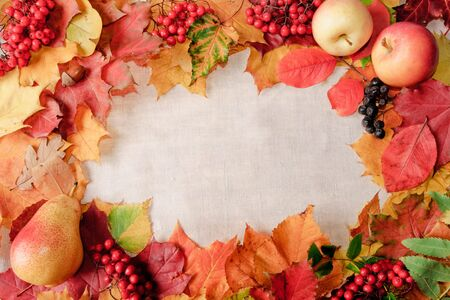 background from autumn leaves and textile Фото со стока