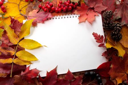 background from autumn leaves and writing-book photo