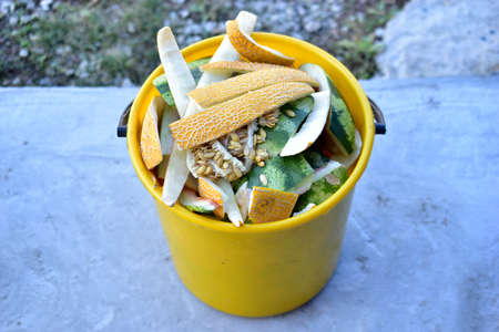 Yellow and white bucket with food waste of vegetables and fruits
