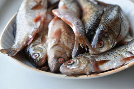 Peeled fresh river fish in a plate in the kitchen Stockfoto