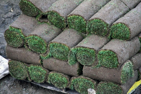 Rolls of turf stacked on top of each other