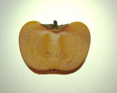 A half an persimmon illuminated from behind Stock Photo - 16921727