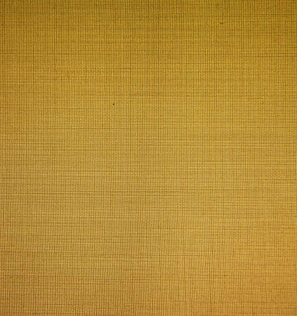 Blank Grungy Canvas Background Stock Photo - 17874995