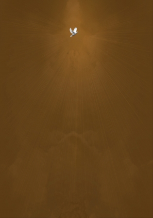 Holy Spirit Bird on Brown Glowing Clouds Background