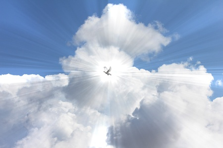 Holy Spirit Bird and sun rays on  heaven background