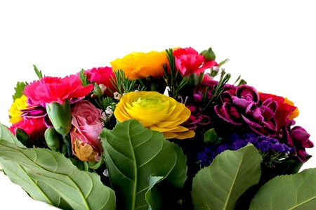 Bouquet of various flowers  isolated on white background Stock Photo - 18809868