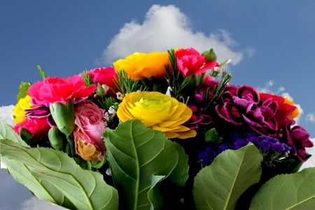 Bouquet of various flowers  on blue sky background photo