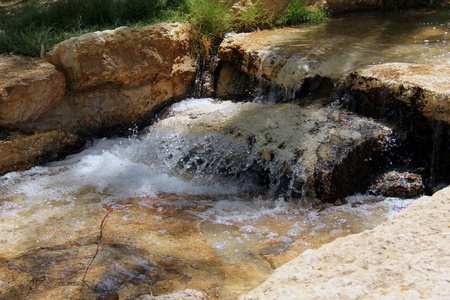 bourn: Small stream. Creek, artificially created an oasis in the Negev Desert Stock Photo