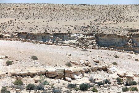 Ein Avdat Canyon in Negev desert, Israel  photo