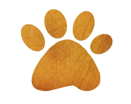 cat cartoon: Paw print on white background