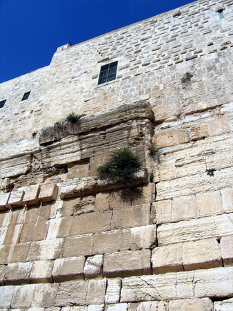 talmud: Walls of the Second Temple  Robinson Arch led up to the supporting wall and further inward, into the territory of the inner courtyard of the Temple  Here we see in the picture where the arch was connected with the wall