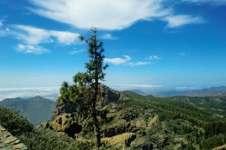 Over the precipice at Gran Canaria photo