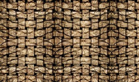 Palm tree bark texture matting  photo