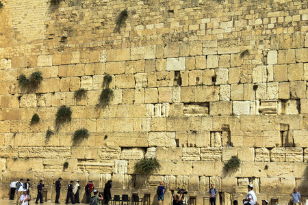 hassidic: Unidentified jewish worshipers pray at the Wailing Wall an important jewish religious site. Jerusalem. Israel