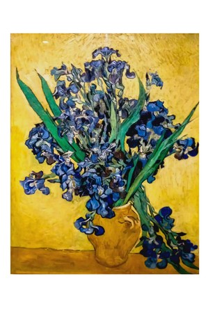 AMSTERDAM, NETHERLANDS - AUGUST 10, 2016 : Still Life: Vase with Irises Against a Yellow Background . Photo of original painting by artist Vincent Van Gogh. Oil on canvas. 1890. 92.0 x 73.0 cm Redakční