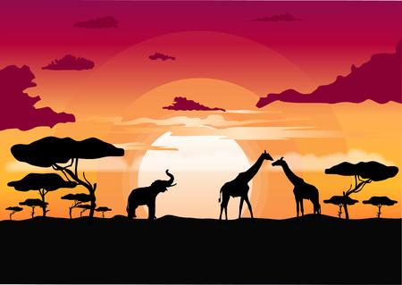 tramonto africano nella savana con silhouette della giraffa, elefante e albero di acacia solitario Vettoriali